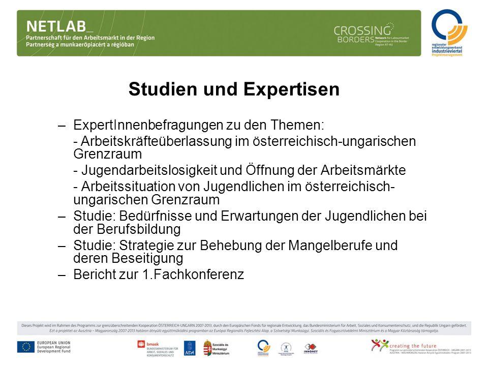 Studien und Expertisen –ExpertInnenbefragungen zu den Themen: - Arbeitskräfteüberlassung im österreichisch-ungarischen Grenzraum - Jugendarbeitslosigk