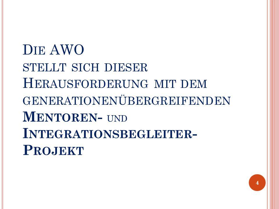 H ERAUSFORDERUNG : DEMOGRAPHISCHER UND GESELLSCHAFTLICHER W ANDEL DIES ERFORDERT : Vielfältige, zielgerichtete Aktivitäten im Bereich der beruflichen und sozialen Integration auf den verschiedenen Generationsebenen 3
