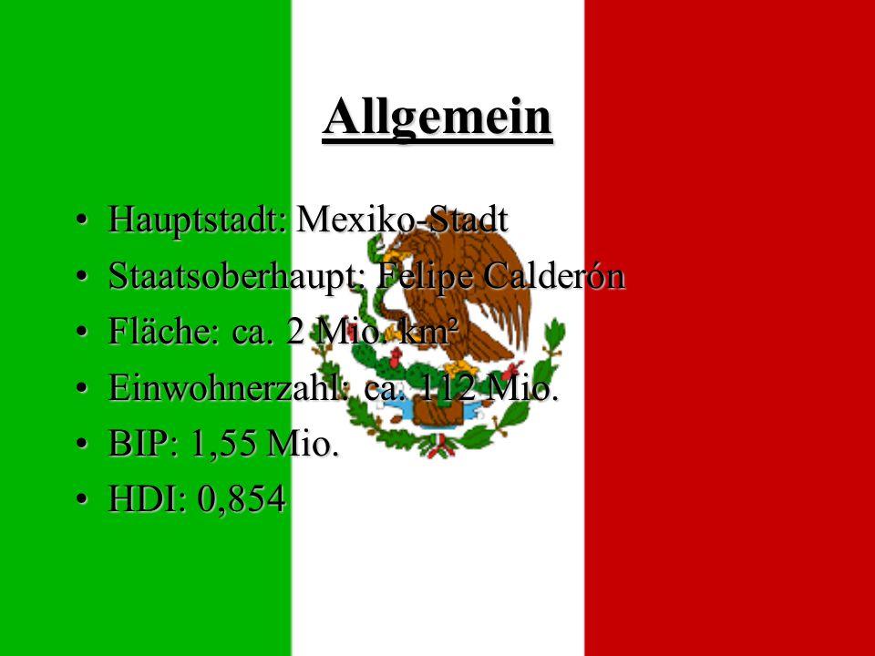 Allgemein Hauptstadt: Mexiko-StadtHauptstadt: Mexiko-Stadt Staatsoberhaupt: Felipe CalderónStaatsoberhaupt: Felipe Calderón Fläche: ca.