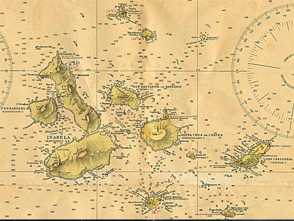 Alle Tiere wurden bei der Schöpfung von Gott erschaffen  Die Galapagosinseln entstanden durch Vulkanausbrüche im Meer  Auf den Galapagosinseln dürfte es keine Landtiere geben Es gab aber viele Tiere !