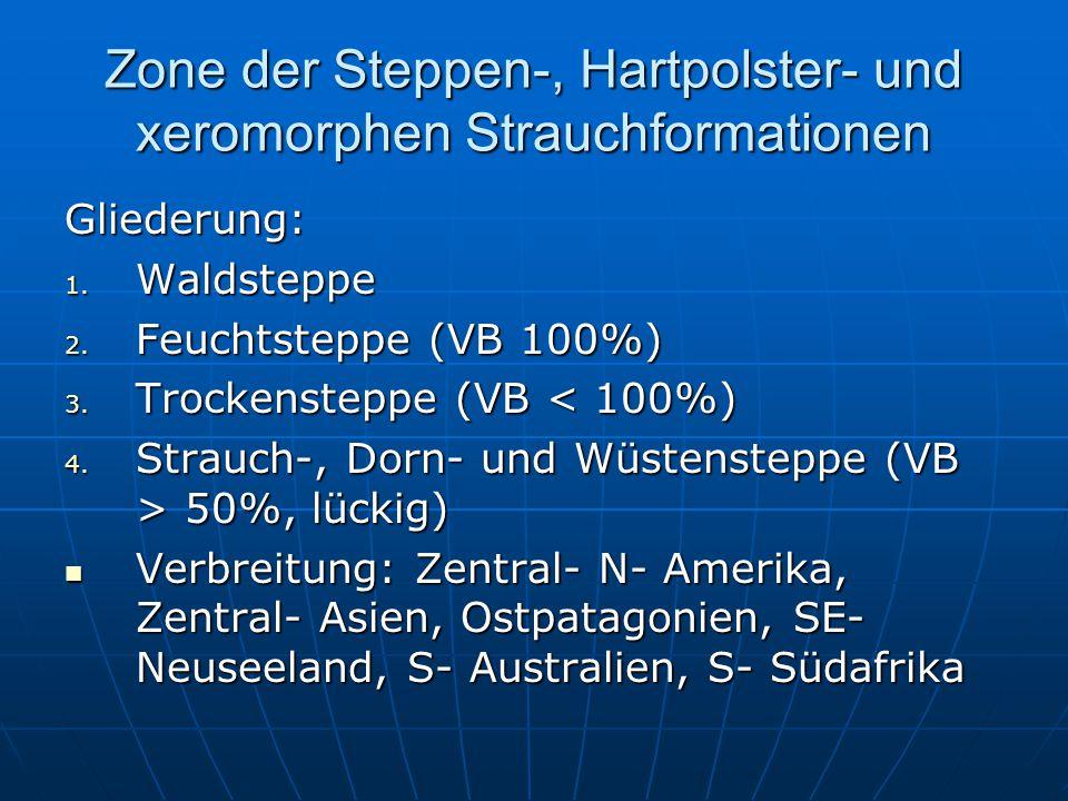 Zone der Steppen-, Hartpolster- und xeromorphen Strauchformationen Gliederung: 1. Waldsteppe 2. Feuchtsteppe (VB 100%) 3. Trockensteppe (VB < 100%) 4.