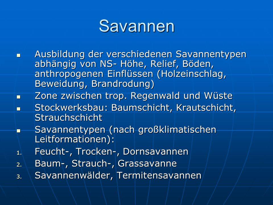 Savannen Ausbildung der verschiedenen Savannentypen abhängig von NS- Höhe, Relief, Böden, anthropogenen Einflüssen (Holzeinschlag, Beweidung, Brandrod