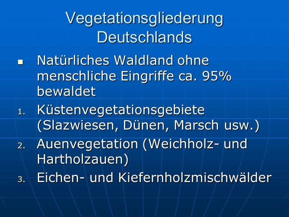 Vegetationsgliederung Deutschlands Natürliches Waldland ohne menschliche Eingriffe ca. 95% bewaldet Natürliches Waldland ohne menschliche Eingriffe ca