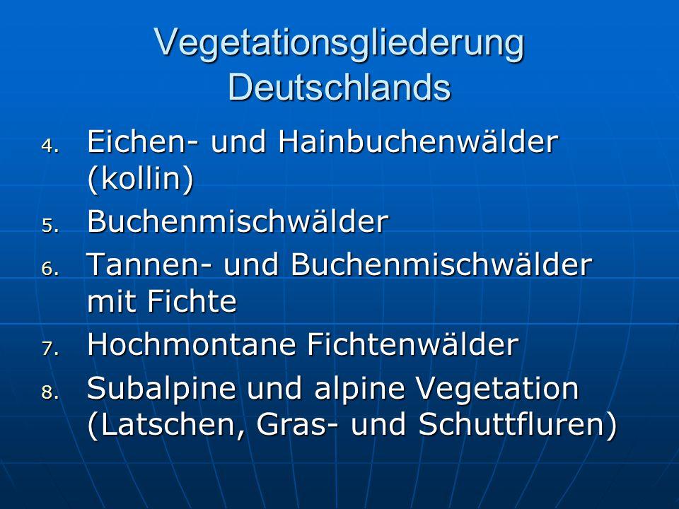 Vegetationsgliederung Deutschlands 4. Eichen- und Hainbuchenwälder (kollin) 5. Buchenmischwälder 6. Tannen- und Buchenmischwälder mit Fichte 7. Hochmo
