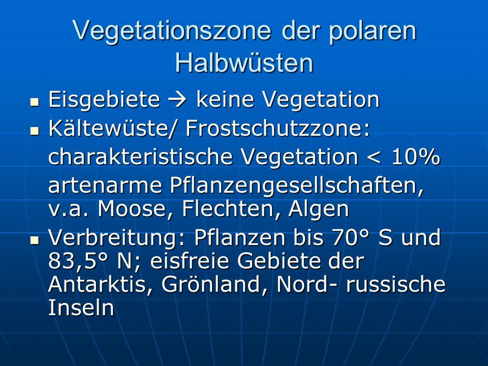 Vegetationszone der polaren Halbwüsten Eisgebiete  keine Vegetation Eisgebiete  keine Vegetation Kältewüste/ Frostschutzzone: Kältewüste/ Frostschut