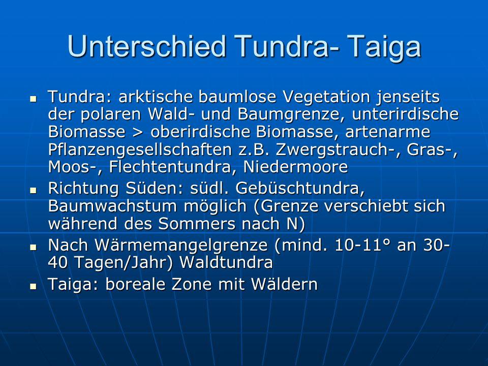 Unterschied Tundra- Taiga Tundra: arktische baumlose Vegetation jenseits der polaren Wald- und Baumgrenze, unterirdische Biomasse > oberirdische Bioma