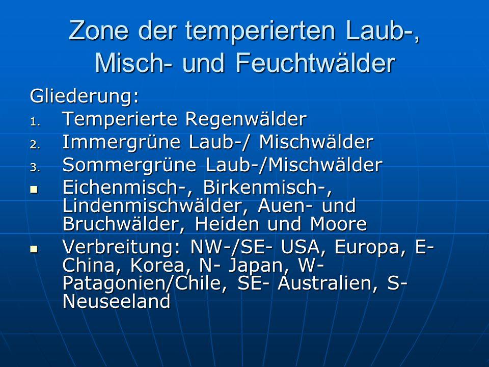 Zone der temperierten Laub-, Misch- und Feuchtwälder Gliederung: 1. Temperierte Regenwälder 2. Immergrüne Laub-/ Mischwälder 3. Sommergrüne Laub-/Misc