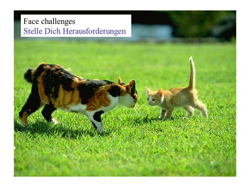 Face challenges Stelle Dich Herausforderungen
