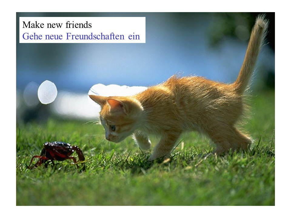 Make new friends Gehe neue Freundschaften ein