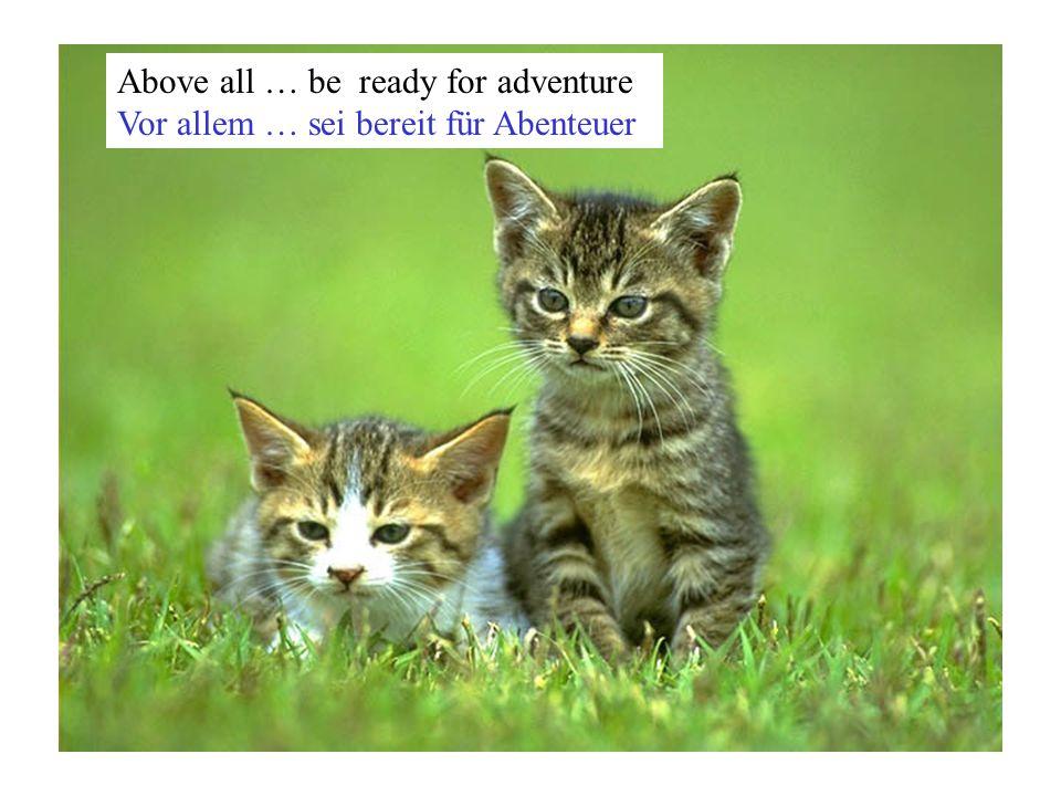 Above all … be ready for adventure Vor allem … sei bereit für Abenteuer