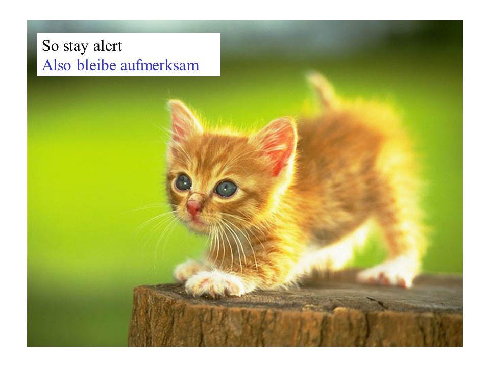 So stay alert Also bleibe aufmerksam