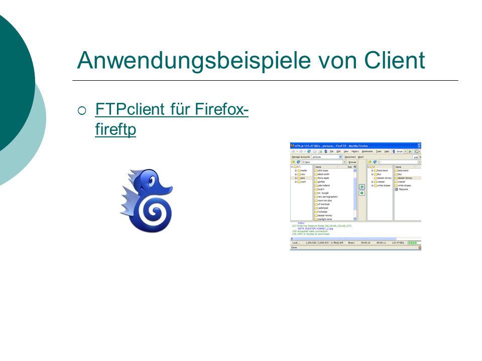Beispiele / Nutzung  Spielprogramm auf Rechner hochladen  Login manchmal nötig (Passwort, Benutzername)  FTP-Server frei zugänglich  Für Nutzung i