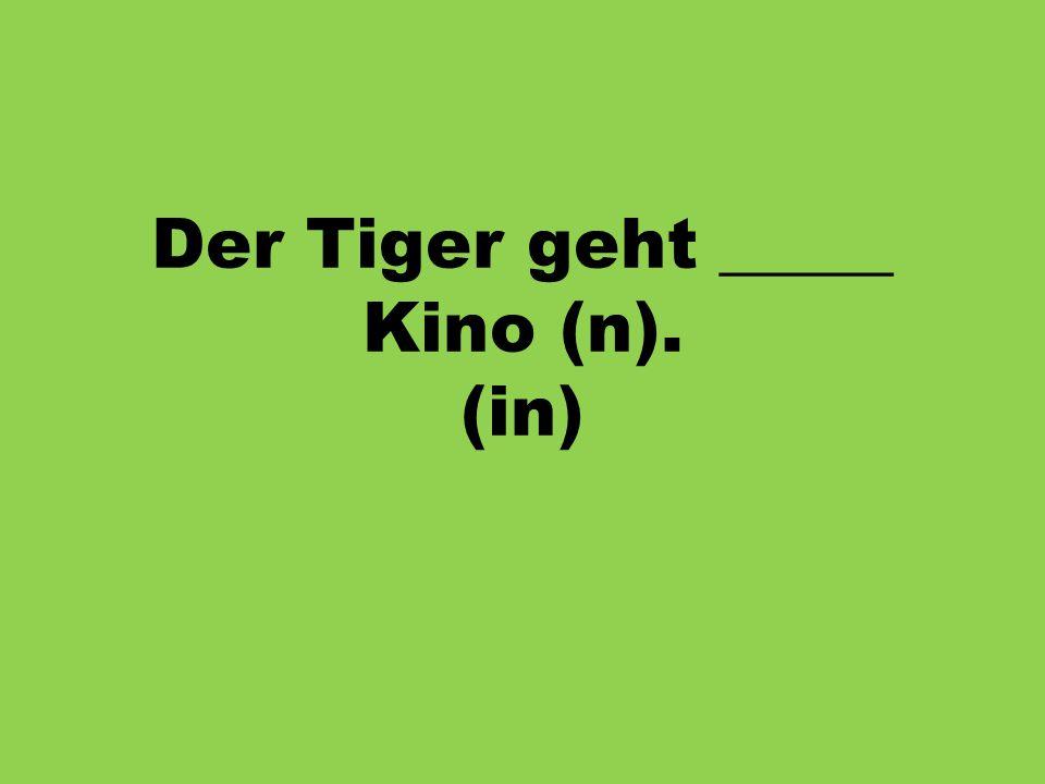 Der Tiger geht _____ Kino (n). (in)