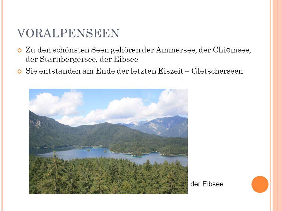 VORALPENSEEN Zu den schönsten Seen gehören der Ammersee, der Chi e msee, der Starnbergersee, der Eibsee Sie entstanden am Ende der letzten Eiszeit – G