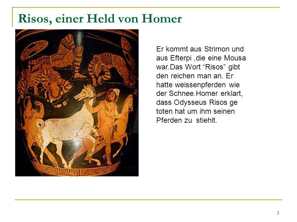 3 Risos, einer Held von Homer Er kommt aus Strimon und aus Efterpi,die eine Mousa war.Das Wort Risos gibt den reichen man an.
