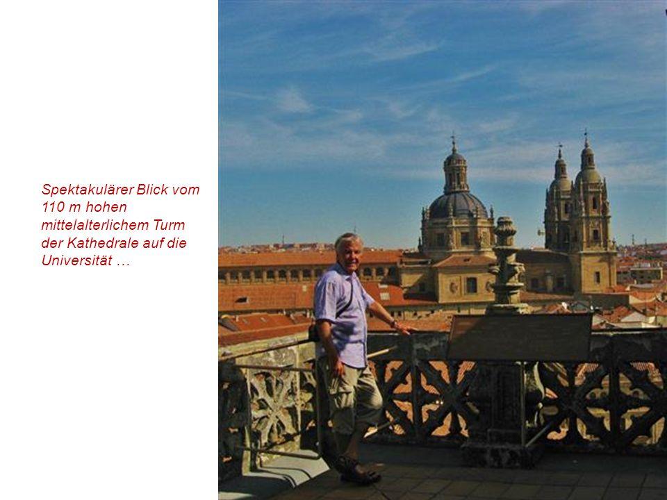 Alte Kathedrale : Vierungsturm (Torre del Gallo)