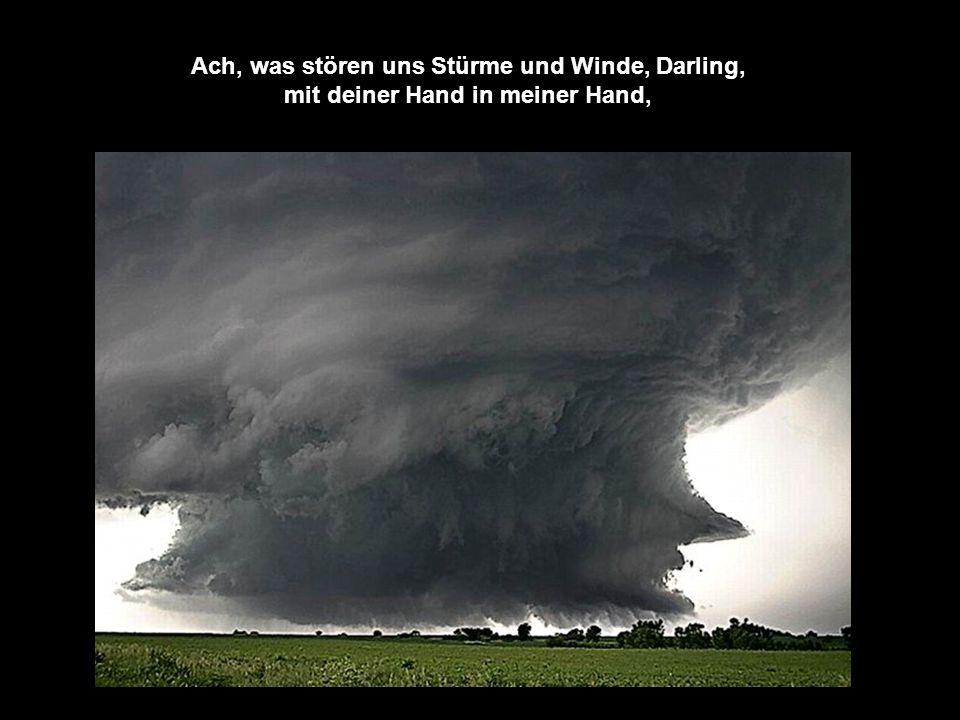 so wie du meine Hand hältst, während der Sturm vorüber weht.