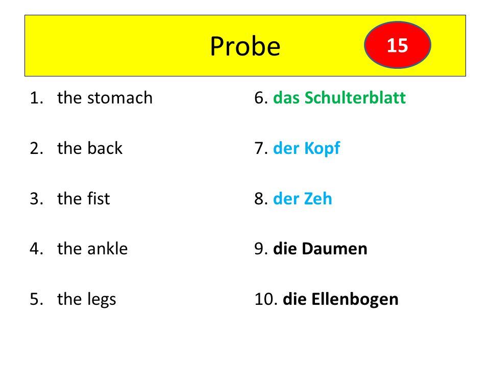 Probe 1.the stomach 2.the back 3.the fist 4.the ankle 5.the legs 6.