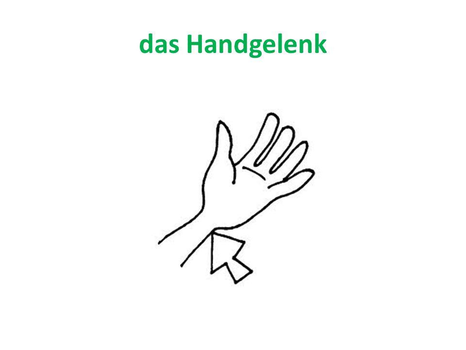 das Handgelenk