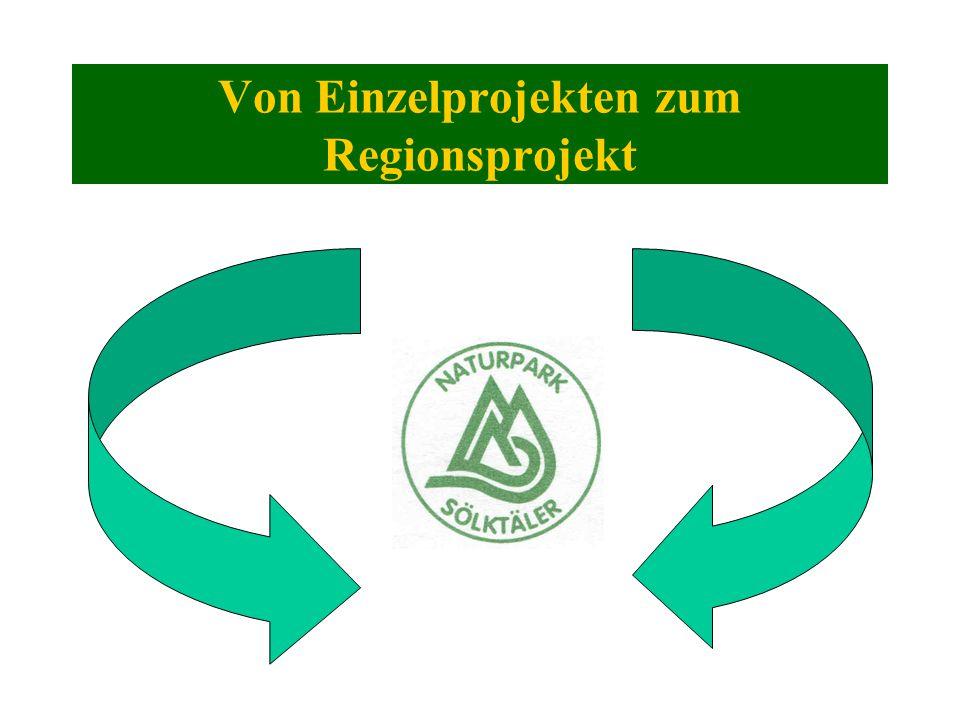 Von Einzelprojekten zum Regionsprojekt