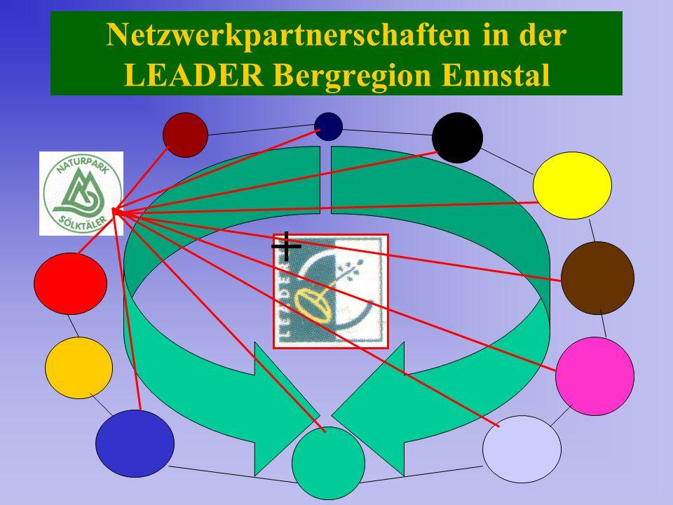 Netzwerkpartnerschaften in der LEADER Bergregion Ennstal +