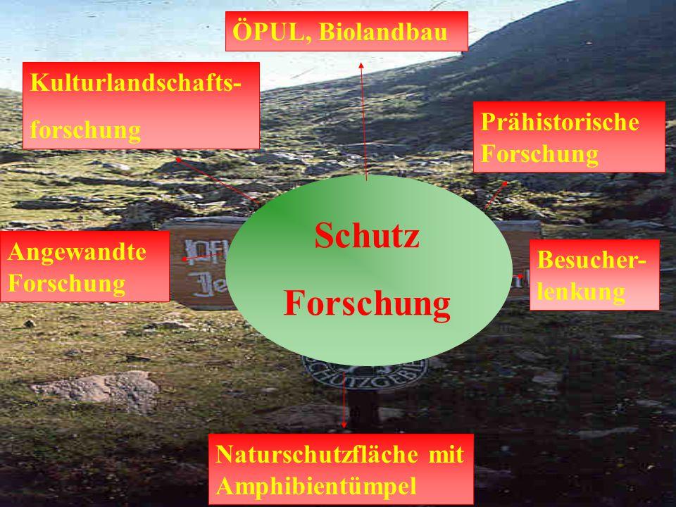 Schutz Forschung Kulturlandschafts- forschung Besucher- lenkung Angewandte Forschung Naturschutzfläche mit Amphibientümpel ÖPUL, Biolandbau Prähistori