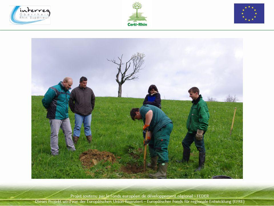 Projet soutenu par le Fonds européen de développement régional – FEDER Dieses Projekt wird von der Europäischen Union finanziert – Europäischer Fonds für regionale Entwicklung (EFRE)