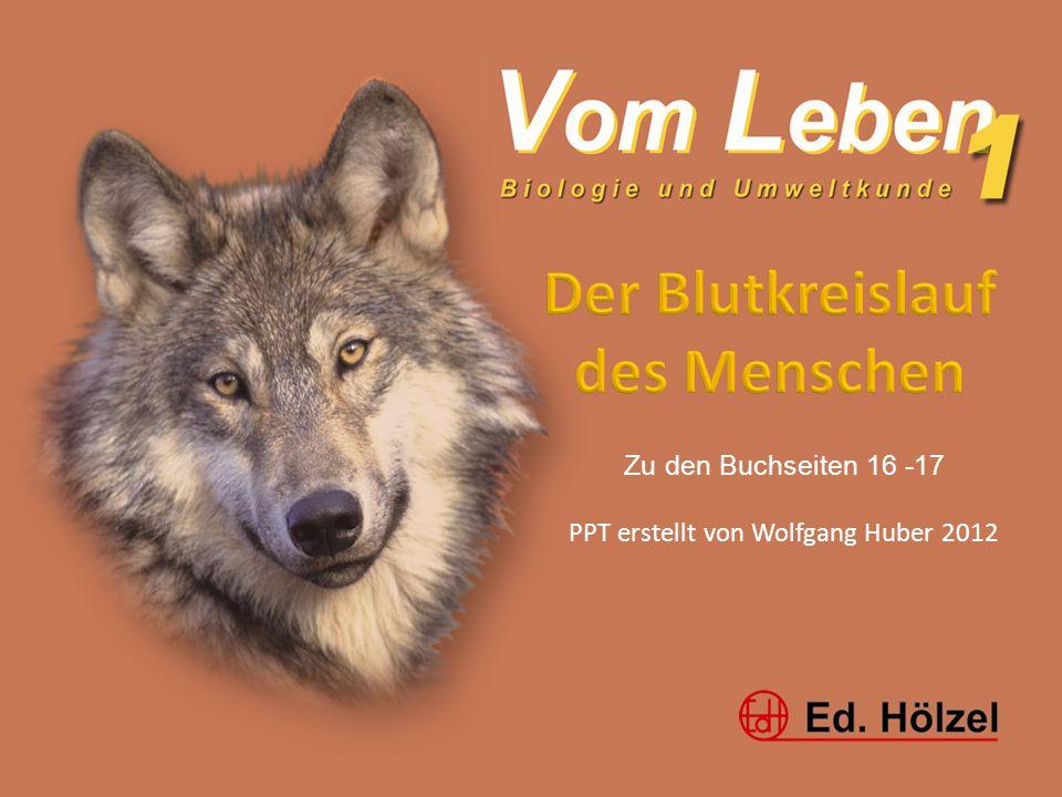 Vom Leben 1 / Blutkreislauf / Huber 20121 Zu den Buchseiten 16 -17 PPT erstellt von Wolfgang Huber 2012