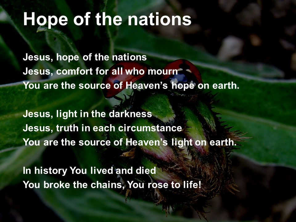 Hope of the nations Jesus, hope of the nations Jesus, comfort for all who mourn You are the source of Heaven's hope on earth.