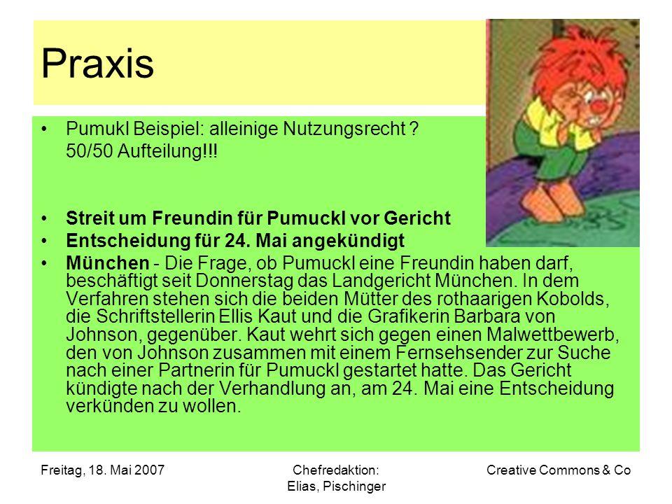 Freitag, 18. Mai 2007Chefredaktion: Elias, Pischinger Creative Commons & Co Praxis Pumukl Beispiel: alleinige Nutzungsrecht ? 50/50 Aufteilung!!! Stre