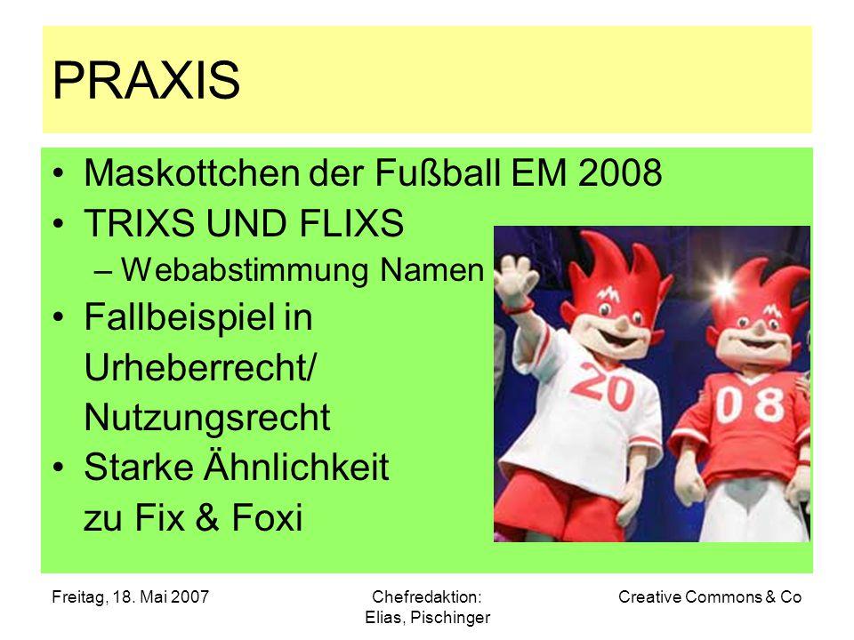 Freitag, 18. Mai 2007Chefredaktion: Elias, Pischinger Creative Commons & Co PRAXIS Maskottchen der Fußball EM 2008 TRIXS UND FLIXS –Webabstimmung Name
