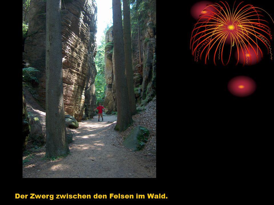 Der Zwerg zwischen den Felsen im Wald.