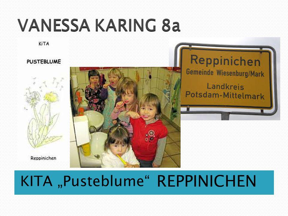 "VANESSA KARING 8a KITA ""Pusteblume"" REPPINICHEN"