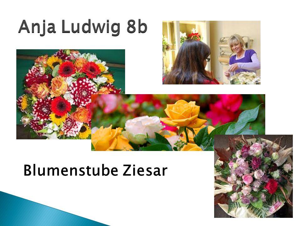 Blumenstube Ziesar Anja Ludwig 8b