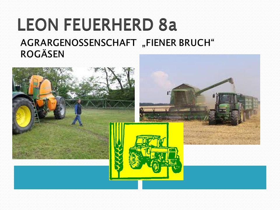 """LEON FEUERHERD 8a AGRARGENOSSENSCHAFT """"FIENER BRUCH"""" ROGÄSEN"""