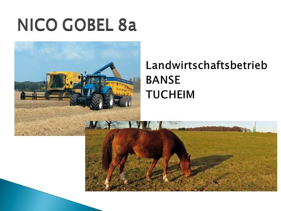  Landwirtschaftsbetrieb  BANSE  TUCHEIM NICO GOBEL 8a