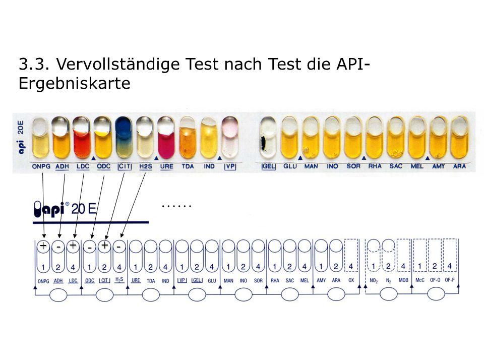 3.3. Vervollständige Test nach Test die API- Ergebniskarte + ++ - - - ……