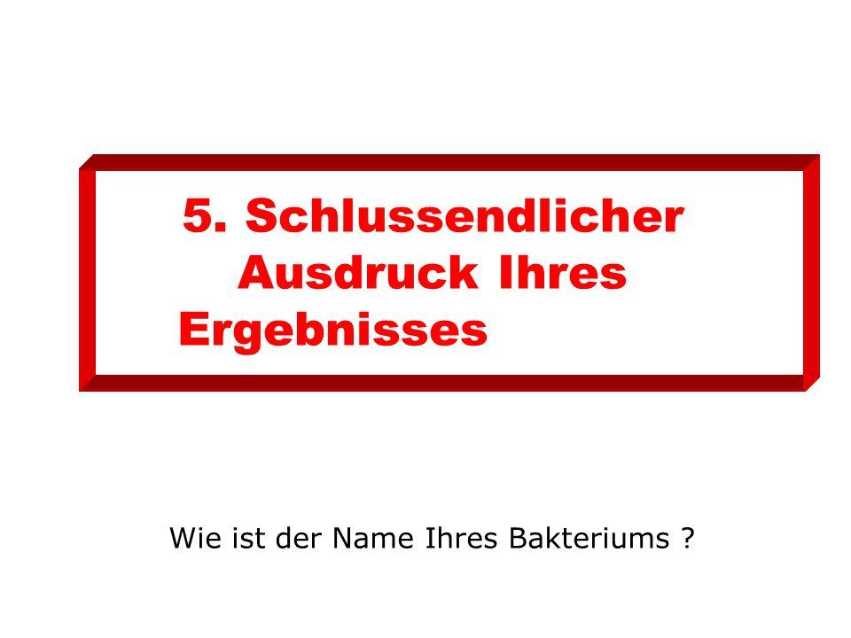 5. Schlussendlicher Ausdruck Ihres Ergebnisses Wie ist der Name Ihres Bakteriums ?
