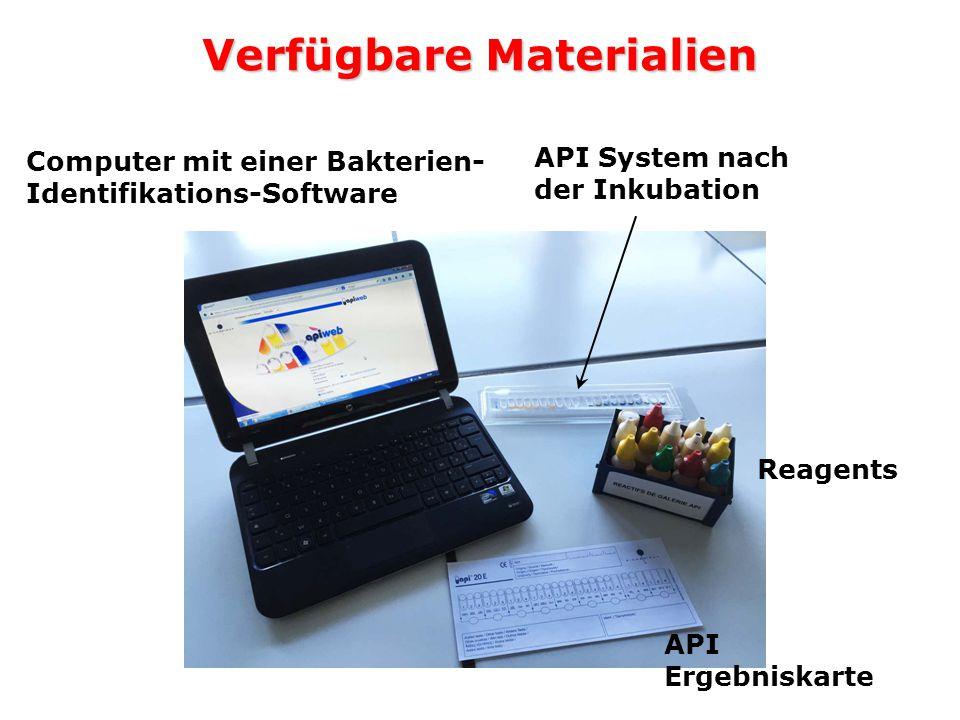 Verfügbare Materialien Computer mit einer Bakterien- Identifikations-Software API System nach der Inkubation Reagents API Ergebniskarte