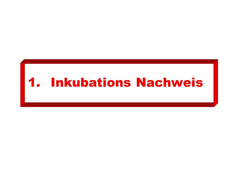 1.Inkubations Nachweis