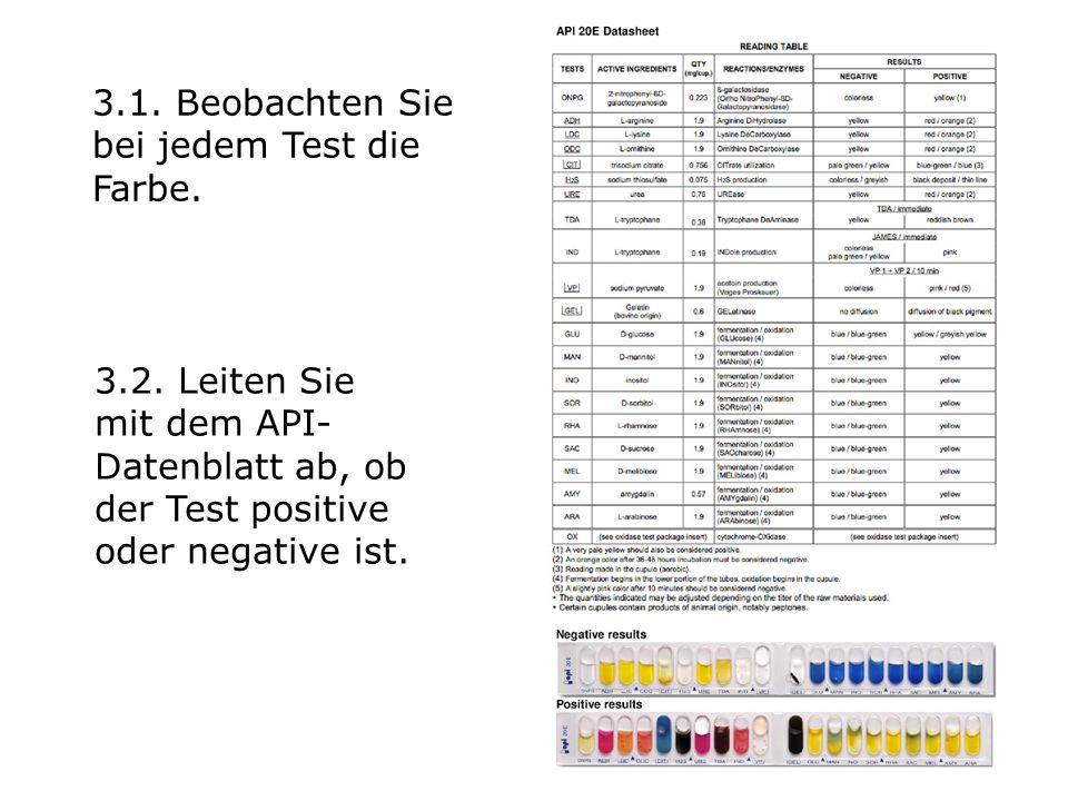 3.1.Beobachten Sie bei jedem Test die Farbe. 3.2.