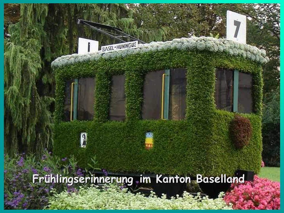 Frühlingserinnerung im Kanton Baselland