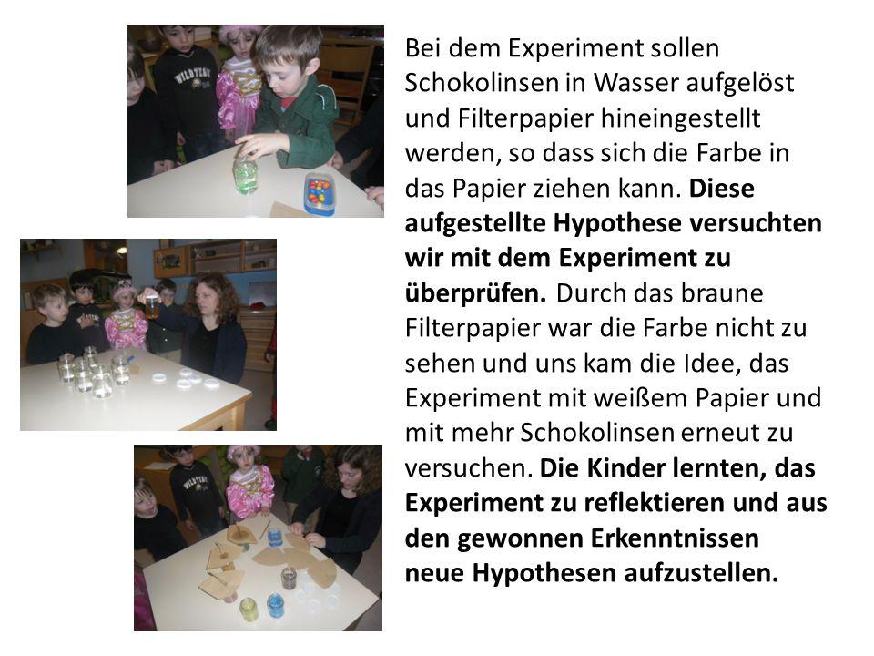 Bei dem Experiment sollen Schokolinsen in Wasser aufgelöst und Filterpapier hineingestellt werden, so dass sich die Farbe in das Papier ziehen kann. D