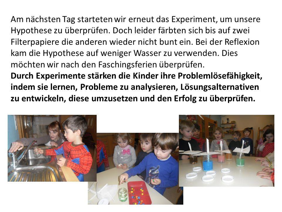 Am nächsten Tag starteten wir erneut das Experiment, um unsere Hypothese zu überprüfen. Doch leider färbten sich bis auf zwei Filterpapiere die andere