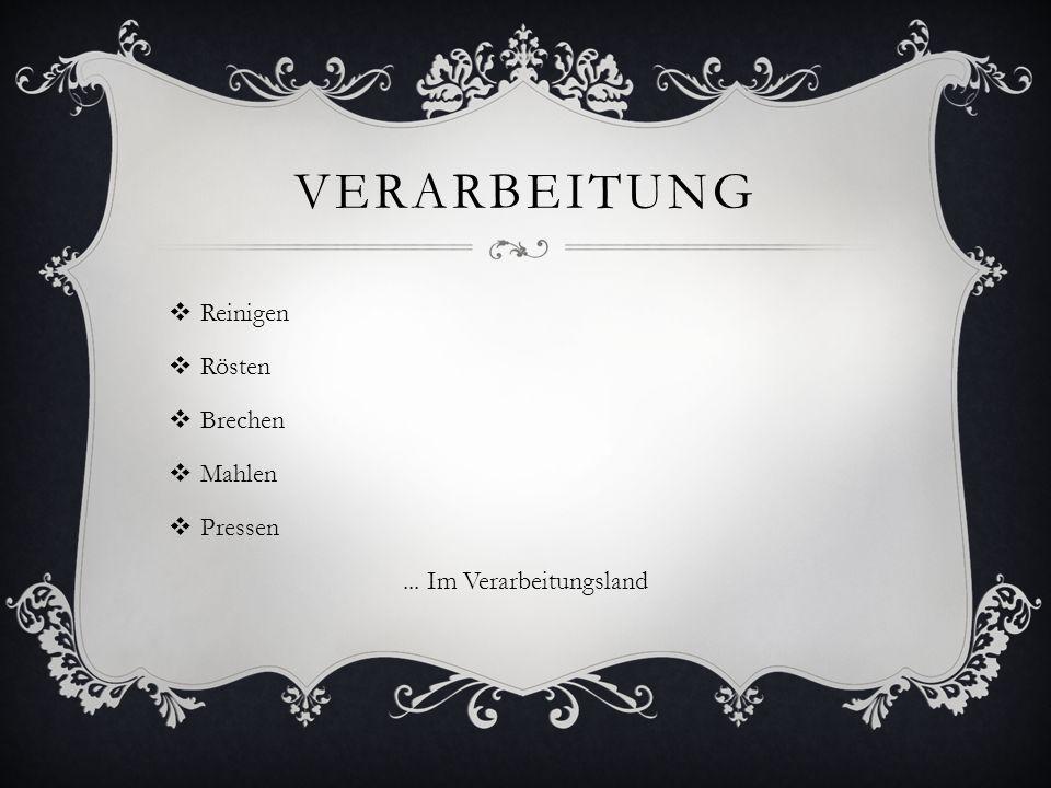 VERARBEITUNG  Reinigen  Rösten  Brechen  Mahlen  Pressen... Im Verarbeitungsland