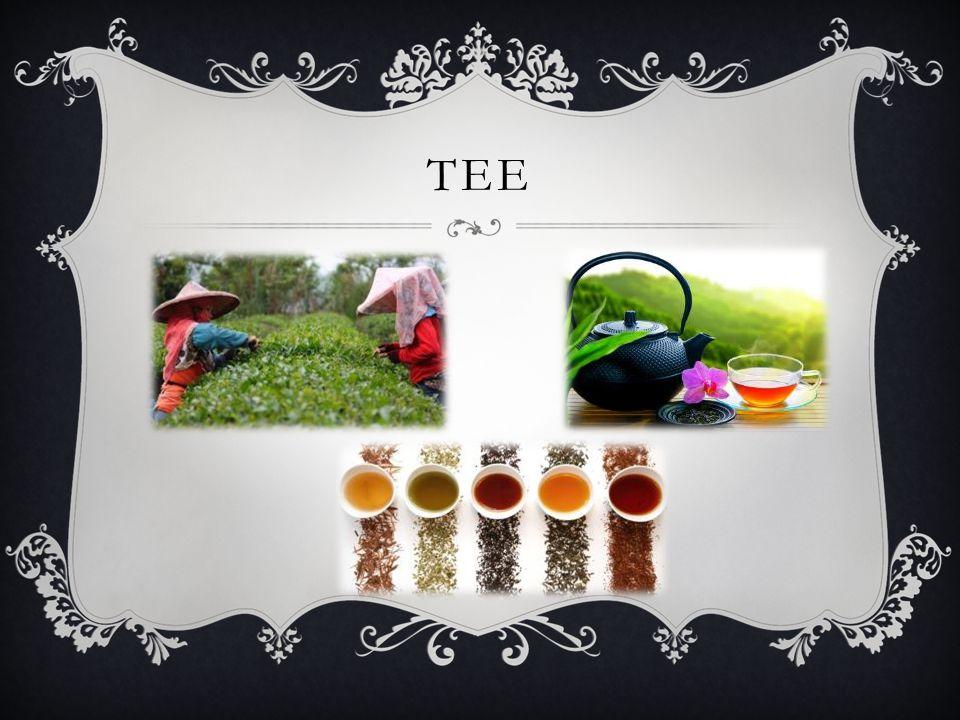 BESCHREIBUNG Es ist ein heißes Aufgussgetränk aus den getrockneten Blätter des Teestrauches.