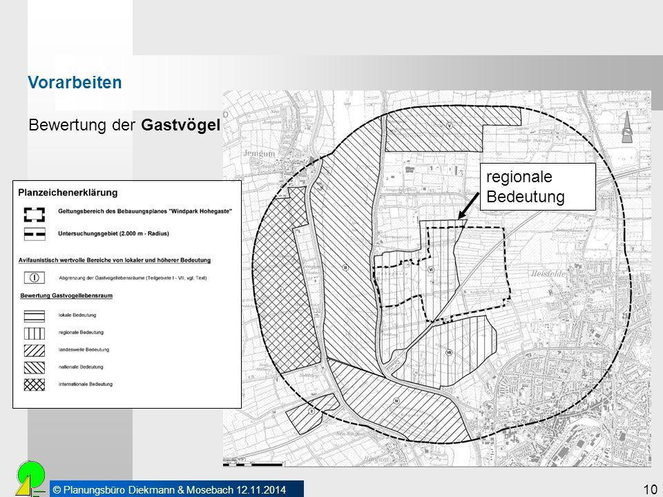 © Planungsbüro Diekmann & Mosebach 12.11.2014 10 Bewertung der Gastvögel Vorarbeiten regionale Bedeutung