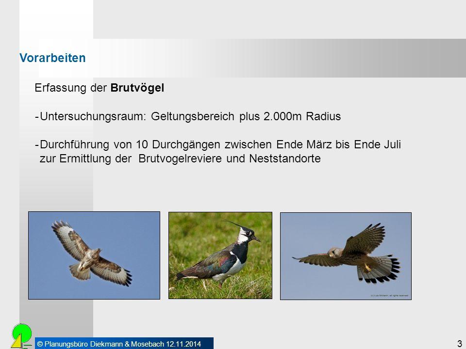 © Planungsbüro Diekmann & Mosebach 12.11.2014 3 Erfassung der Brutvögel Vorarbeiten -Untersuchungsraum: Geltungsbereich plus 2.000m Radius -Durchführu
