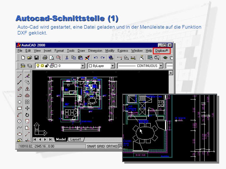 Autocad-Schnittstelle (1) Auto-Cad wird gestartet, eine Datei geladen und in der Menüleiste auf die Funktion DXF geklickt.