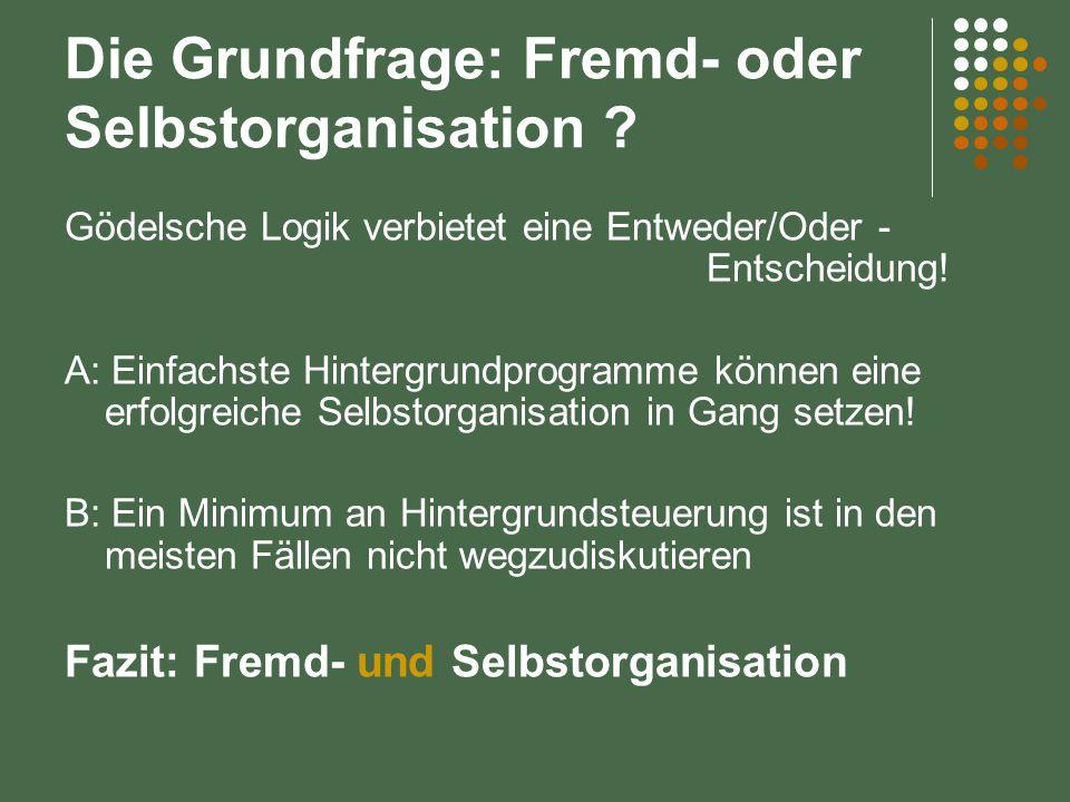 Die Grundfrage: Fremd- oder Selbstorganisation ? Gödelsche Logik verbietet eine Entweder/Oder - Entscheidung! A: Einfachste Hintergrundprogramme könne
